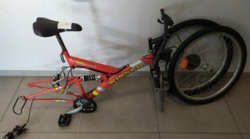 IMG-20210511-WA0012